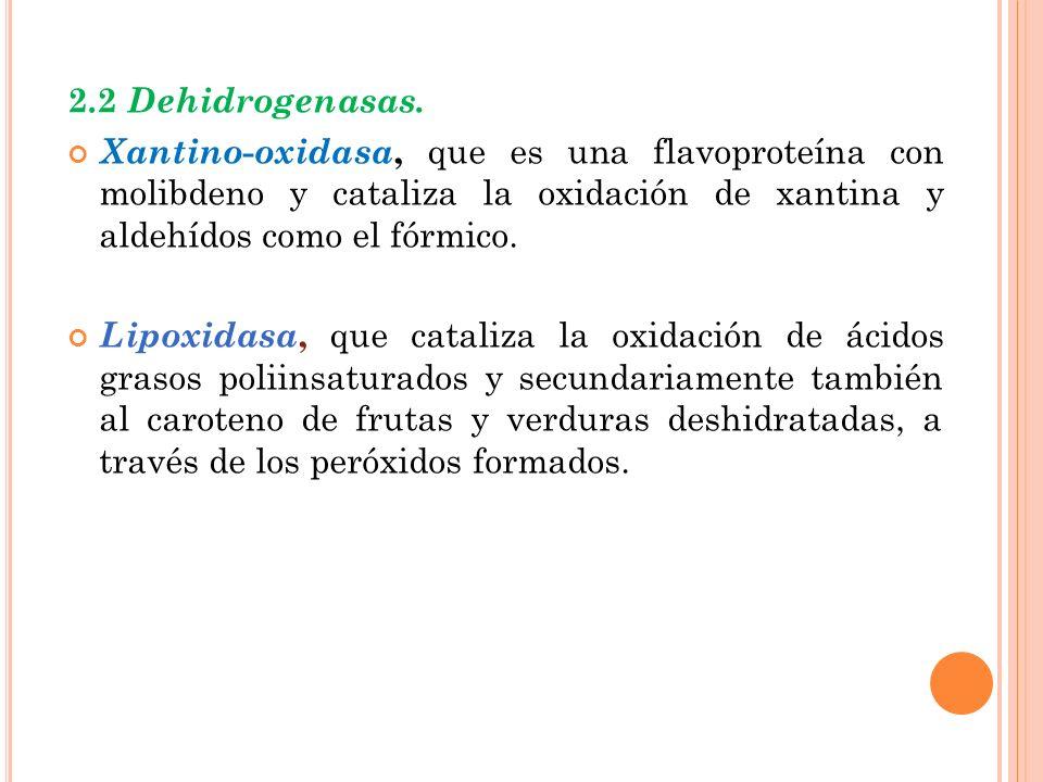 2.2 Dehidrogenasas. Xantino-oxidasa, que es una flavoproteína con molibdeno y cataliza la oxidación de xantina y aldehídos como el fórmico.