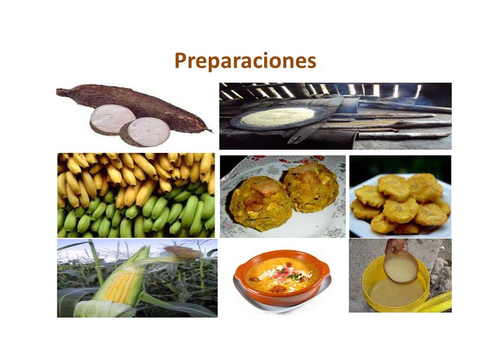 Preparaciones Yuca: fariña, casabe, farofa, crema (sopa), payawarú,