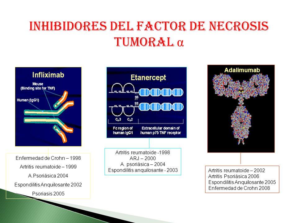 INHIBIDORES DEL FACTOR DE NECROSIS TUMORAL α