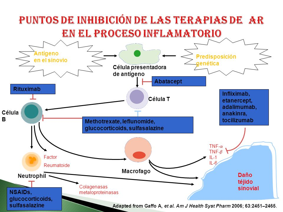 Puntos de inhibición de las terapias de AR en el proceso inflamatorio