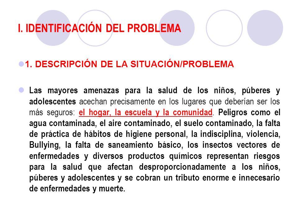 I. IDENTIFICACIÓN DEL PROBLEMA