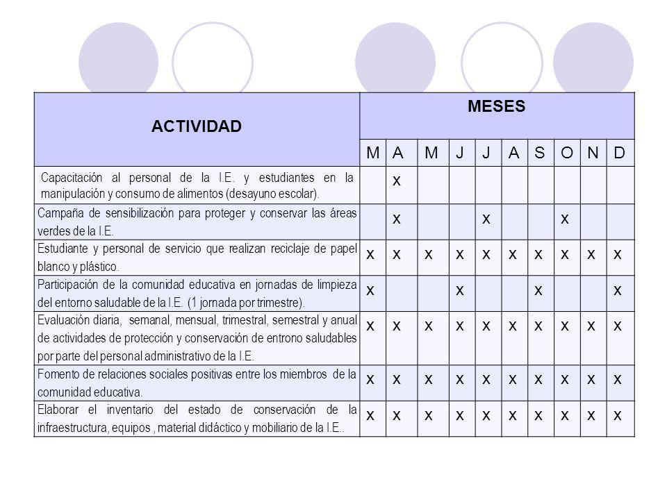ACTIVIDAD MESES M A J S O N D x