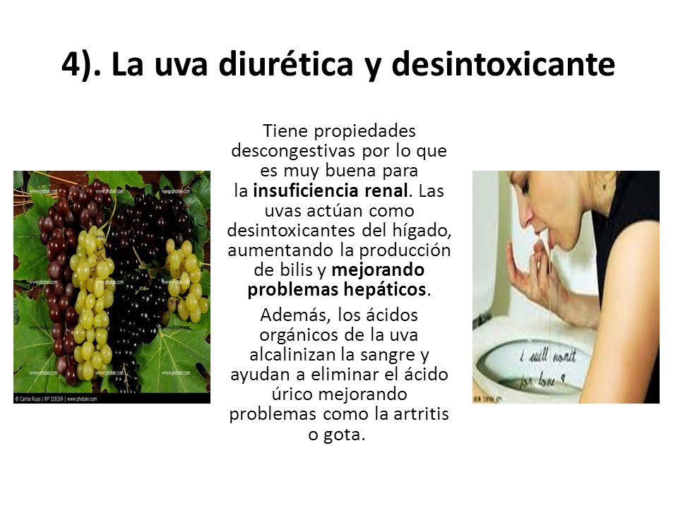 4). La uva diurética y desintoxicante