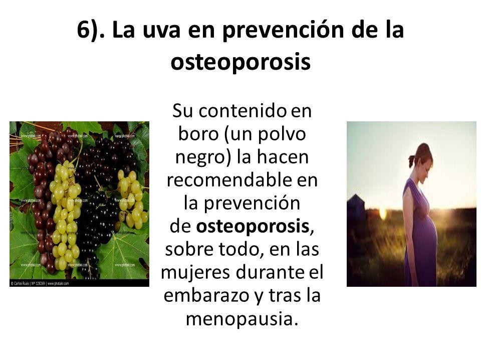 6). La uva en prevención de la osteoporosis