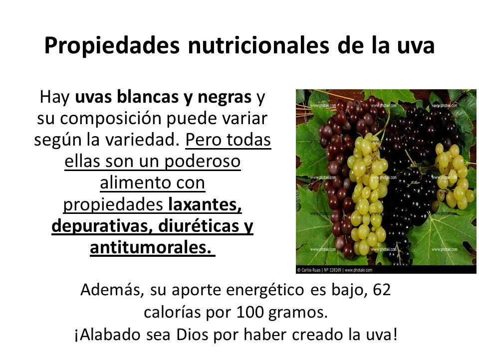 Propiedades nutricionales de la uva