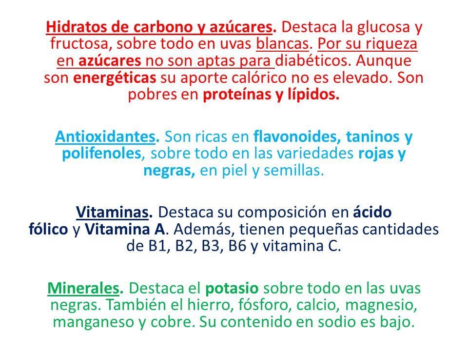 Hidratos de carbono y azúcares