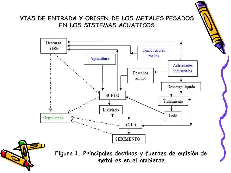 VIAS DE ENTRADA Y ORIGEN DE LOS METALES PESADOS EN LOS SISTEMAS ACUATICOS