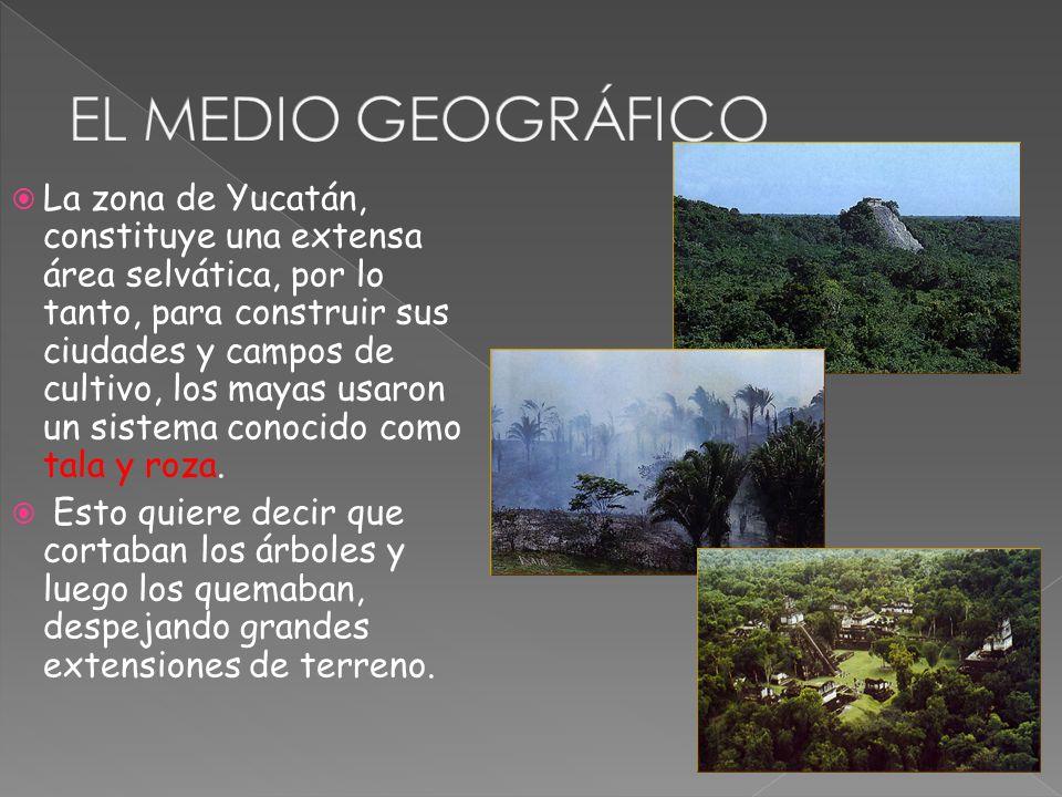 EL MEDIO GEOGRÁFICO