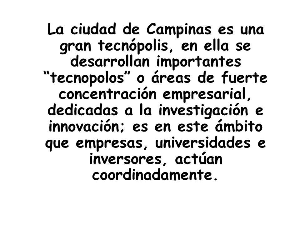 La ciudad de Campinas es una gran tecnópolis, en ella se desarrollan importantes tecnopolos o áreas de fuerte concentración empresarial, dedicadas a la investigación e innovación; es en este ámbito que empresas, universidades e inversores, actúan coordinadamente.