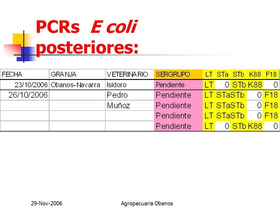 PCRs E coli posteriores: