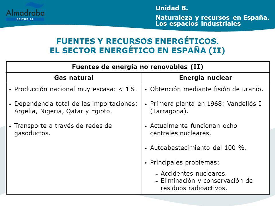 FUENTES Y RECURSOS ENERGÉTICOS. EL SECTOR ENERGÉTICO EN ESPAÑA (II)