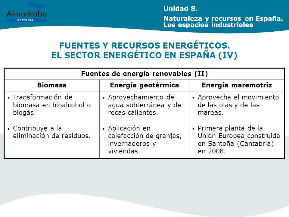 FUENTES Y RECURSOS ENERGÉTICOS. EL SECTOR ENERGÉTICO EN ESPAÑA (IV)