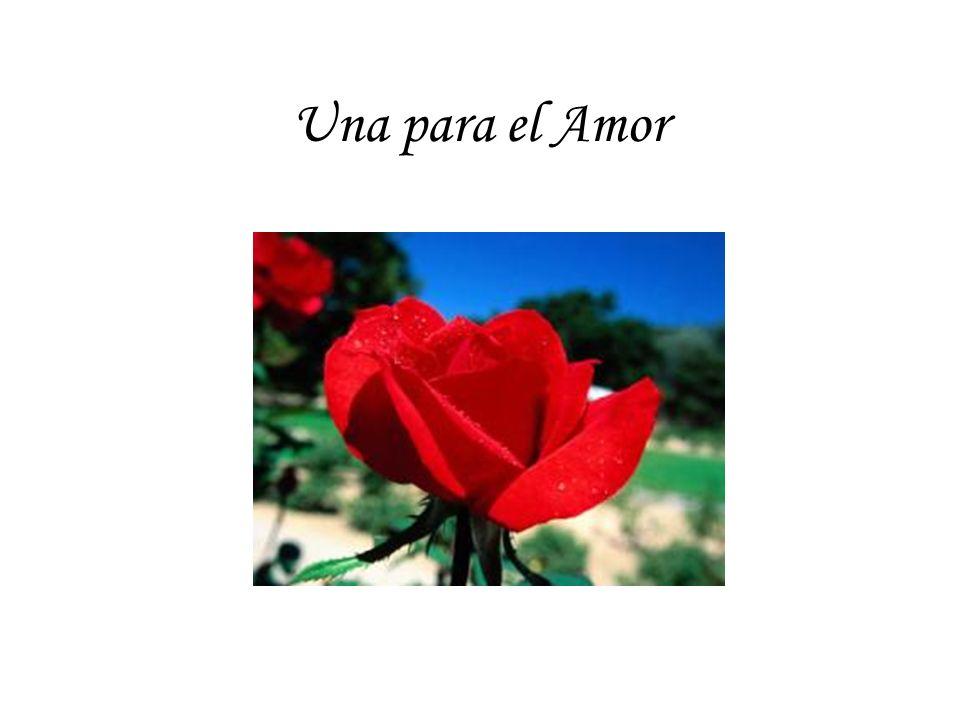 Una para el Amor