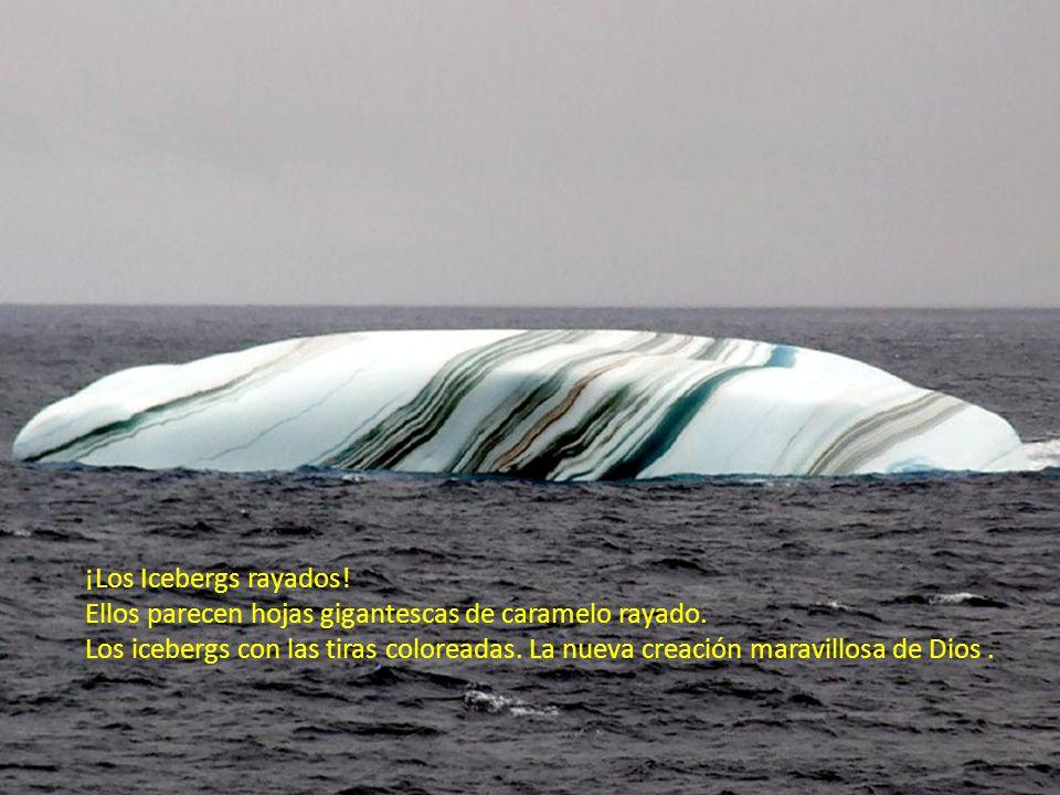 ¡Los Icebergs rayados! Ellos parecen hojas gigantescas de caramelo rayado.