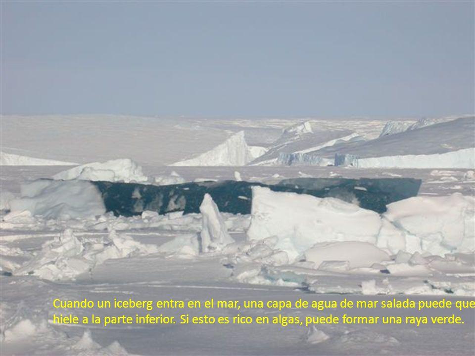 Cuando un iceberg entra en el mar, una capa de agua de mar salada puede que