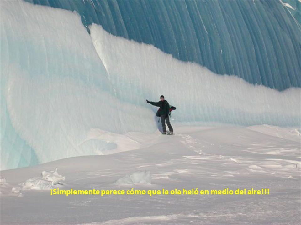 ¡Simplemente parece cómo que la ola heló en medio del aire!!!