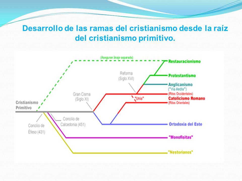 Desarrollo de las ramas del cristianismo desde la raíz del cristianismo primitivo.