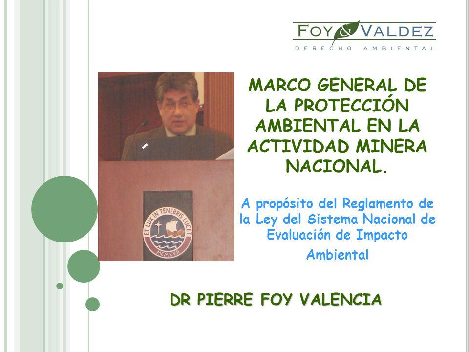 MARCO GENERAL DE LA PROTECCIÓN AMBIENTAL EN LA ACTIVIDAD MINERA NACIONAL. A propósito del Reglamento de la Ley del Sistema Nacional de Evaluación de Impacto Ambiental
