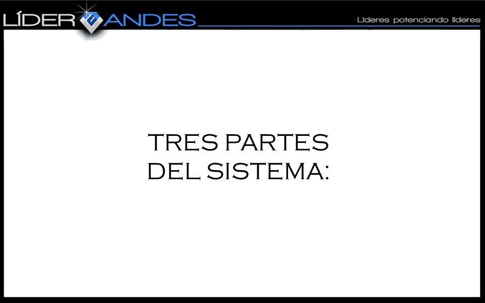 TRES PARTES DEL SISTEMA: