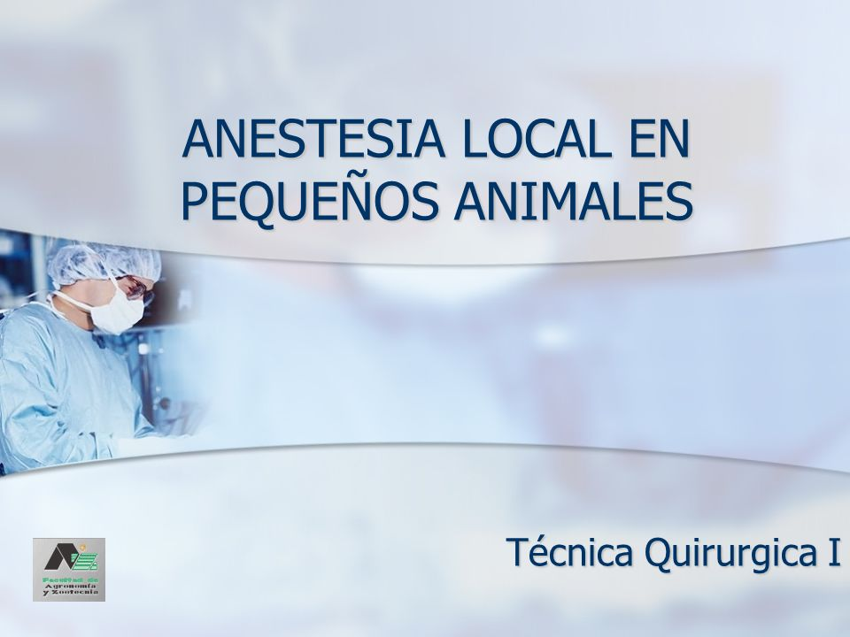 ANESTESIA LOCAL EN PEQUEÑOS ANIMALES