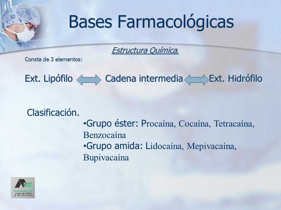 Bases Farmacológicas Ext. Lipófilo Cadena intermedia Ext. Hidrófilo