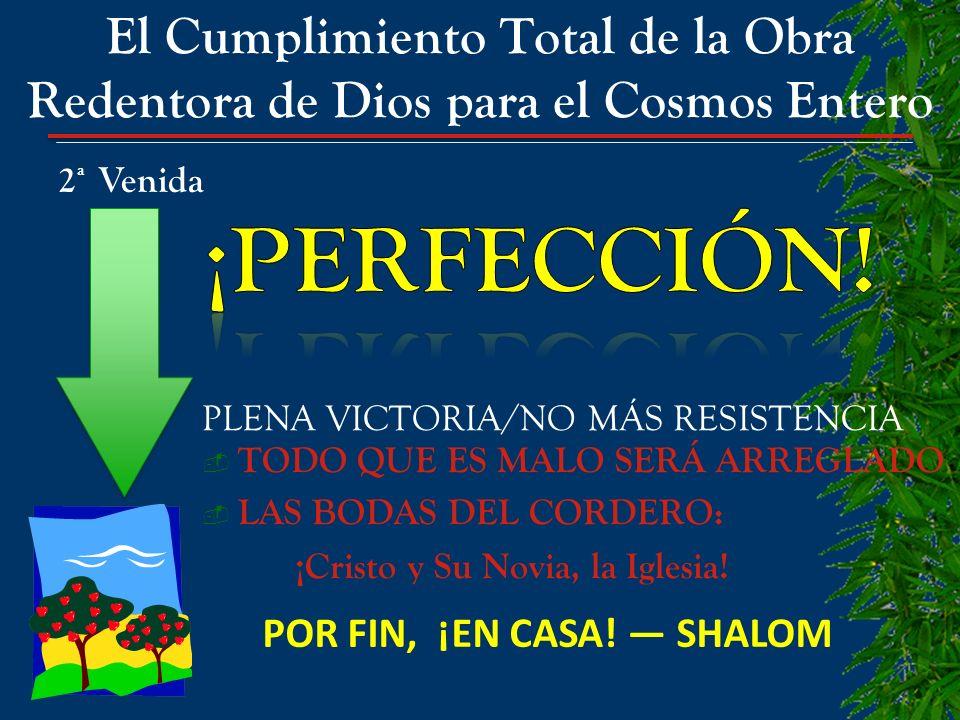 POR FIN, ¡EN CASA! — SHALOM