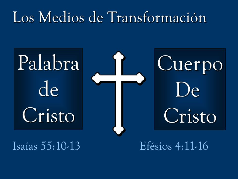 Palabra Cuerpo de De Cristo Cristo Los Medios de Transformación