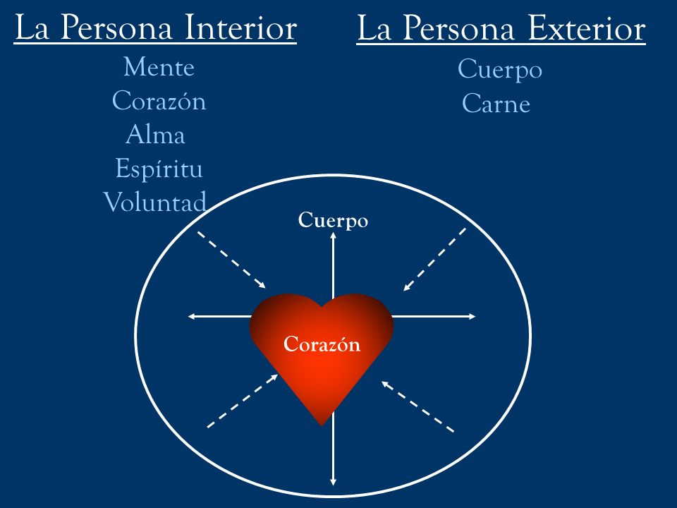 La Persona Interior La Persona Exterior Cuerpo Mente Corazón Carne