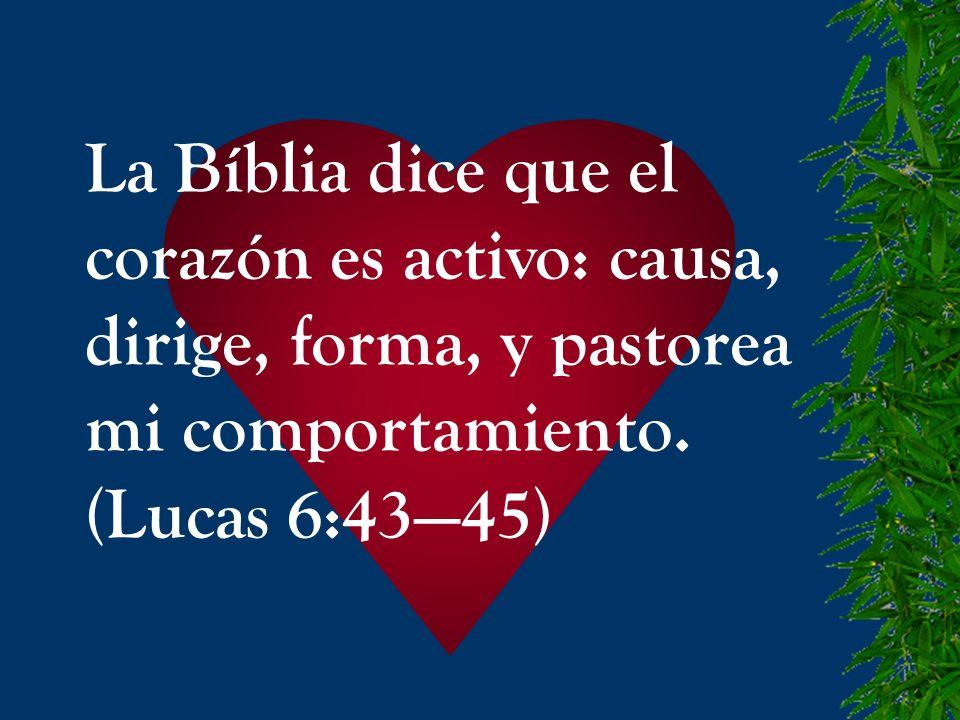 La Bíblia dice que el corazón es activo: causa, dirige, forma, y pastorea.