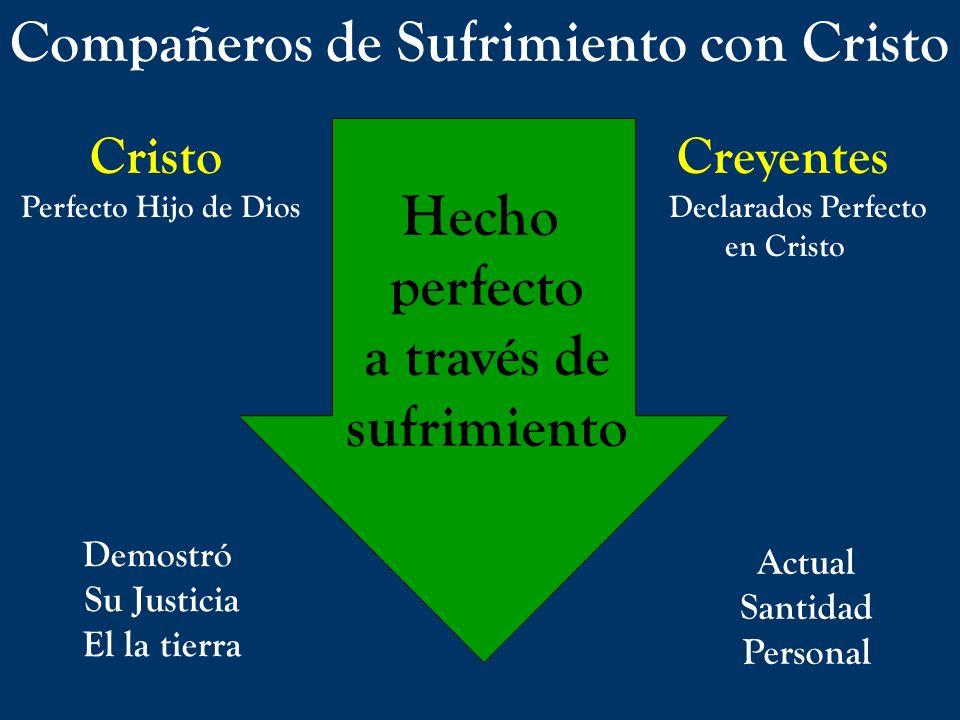 Compañeros de Sufrimiento con Cristo