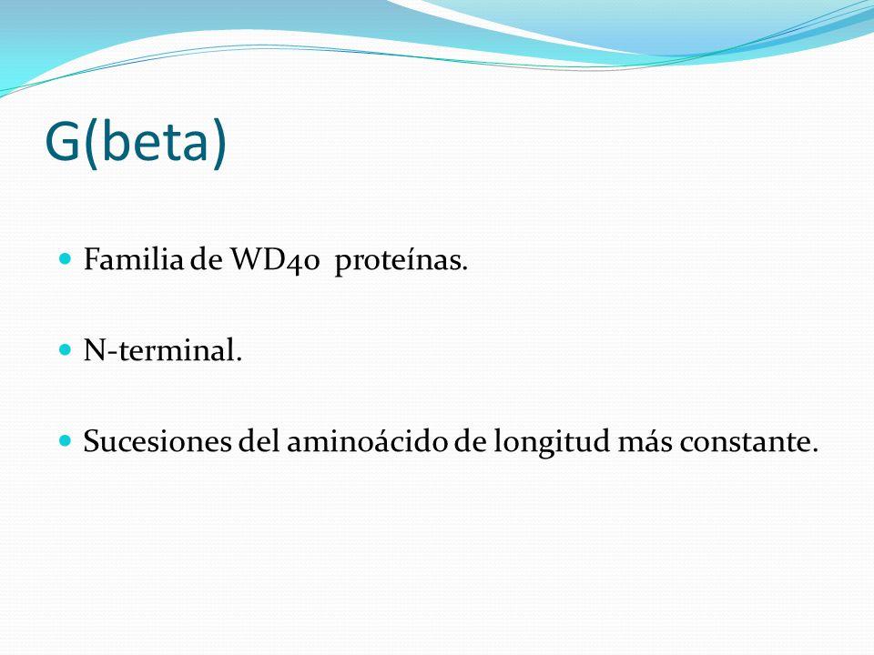 G(beta) Familia de WD40 proteínas. N-terminal.