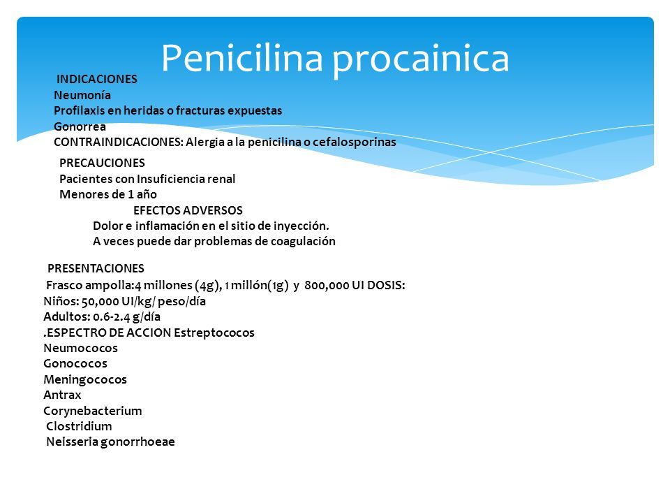 Penicilina procainica