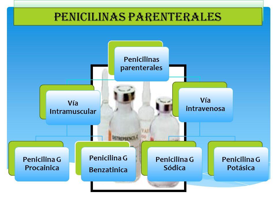C de la penicilinas parenterales