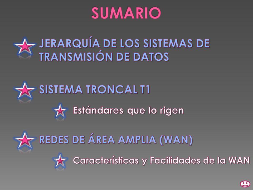 SUMARIO JERARQUÍA DE LOS SISTEMAS DE TRANSMISIÓN DE DATOS
