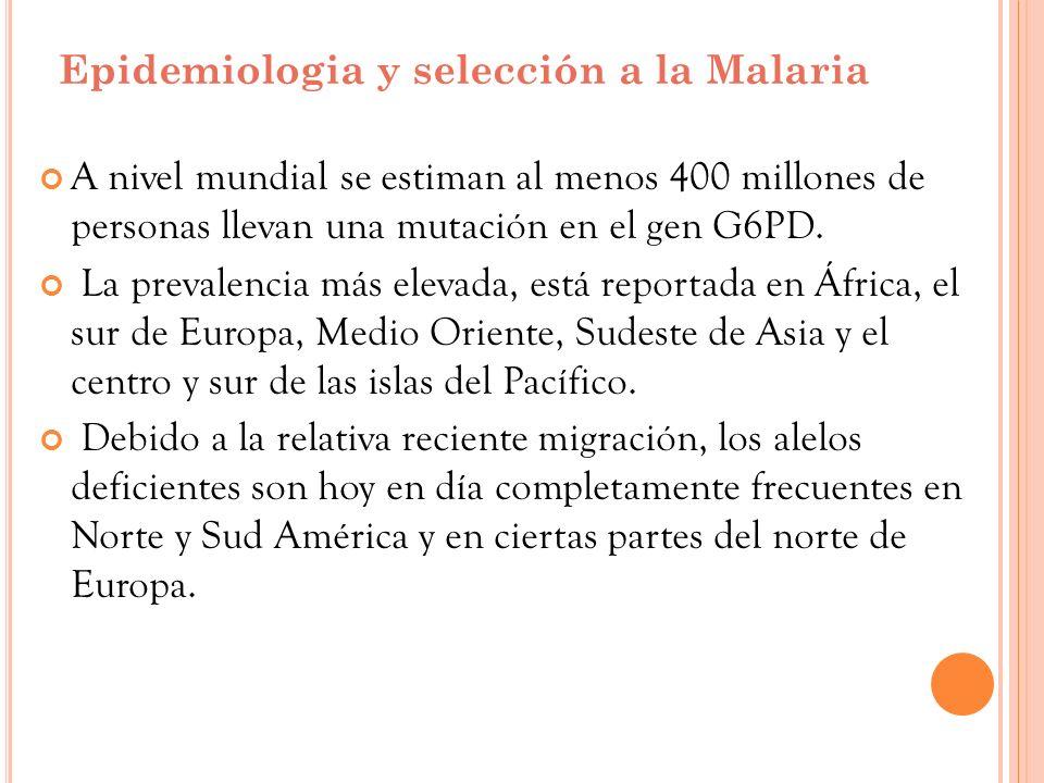 Epidemiologia y selección a la Malaria