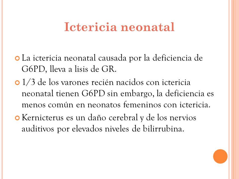 Ictericia neonatal La ictericia neonatal causada por la deficiencia de G6PD, lleva a lisis de GR.