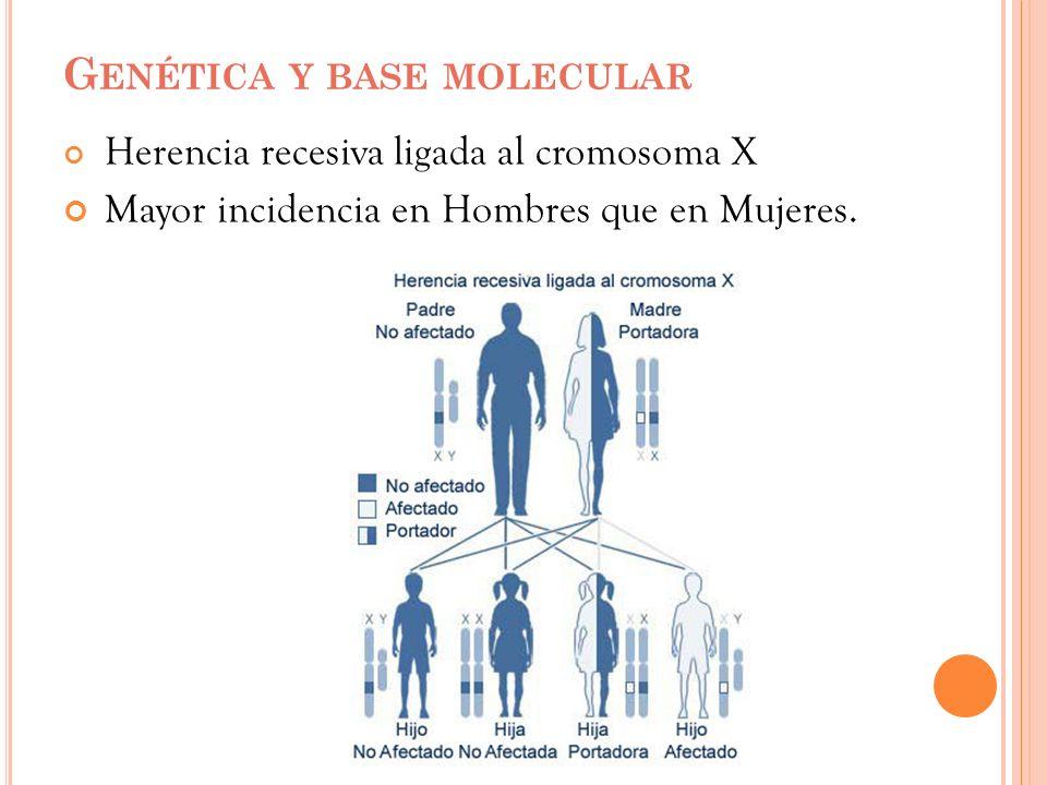 Genética y base molecular