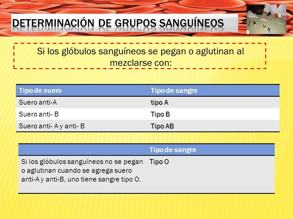 Determinación de grupos sanguíneos