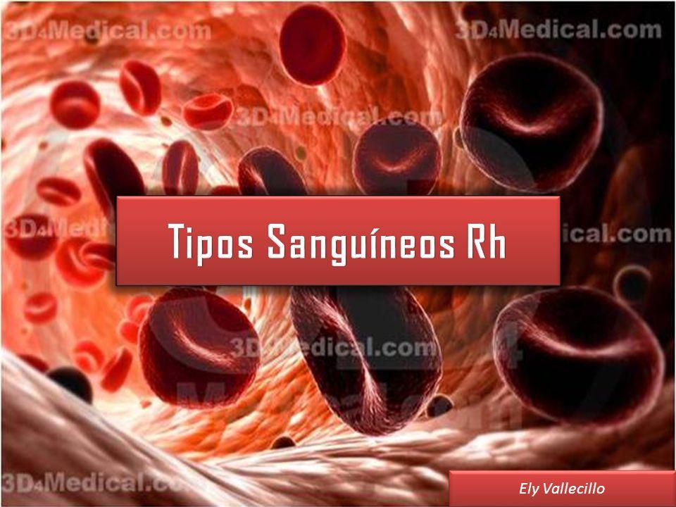Tipos Sanguíneos Rh Ely Vallecillo