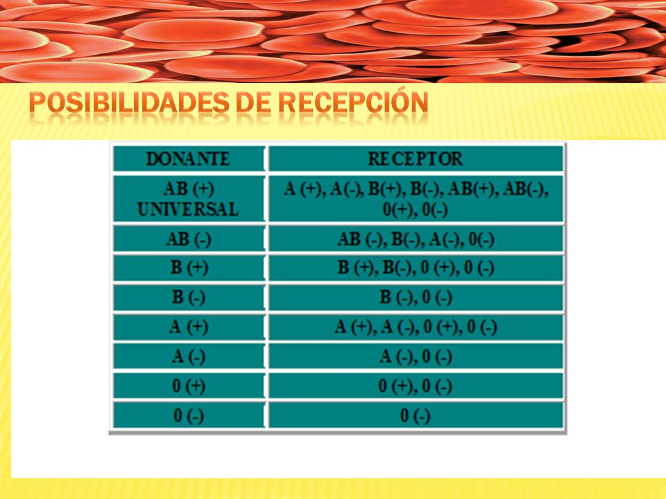 POSIBILIDADES DE RECEPCIÓN