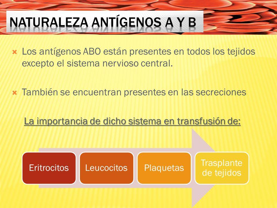 Naturaleza antígenos A y B