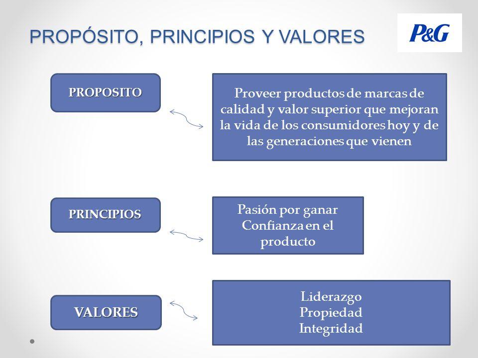 Propósito, Principios y Valores