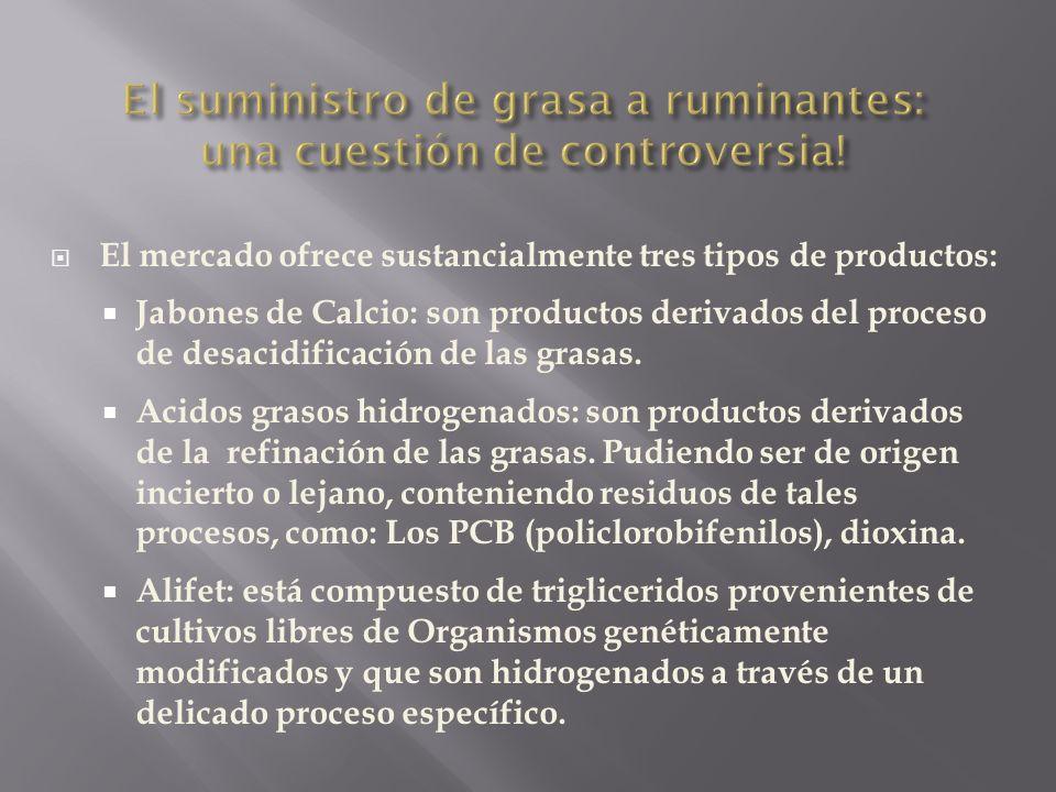 El suministro de grasa a ruminantes: una cuestión de controversia!