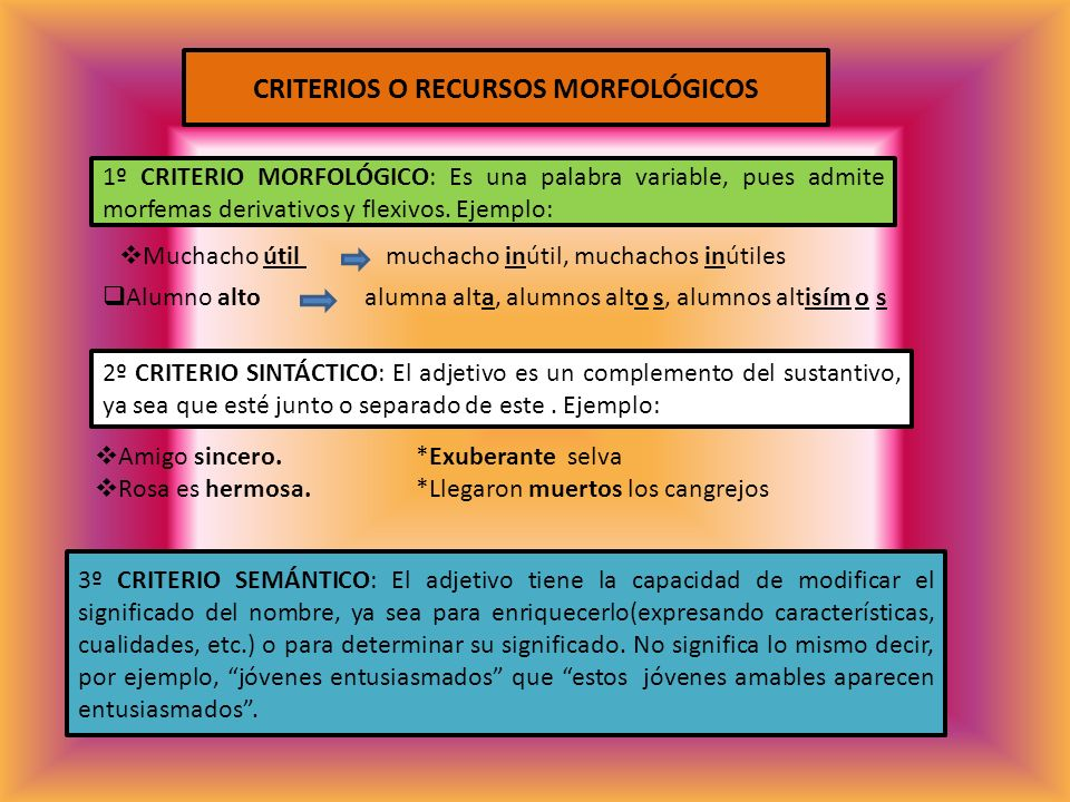 CRITERIOS O RECURSOS MORFOLÓGICOS