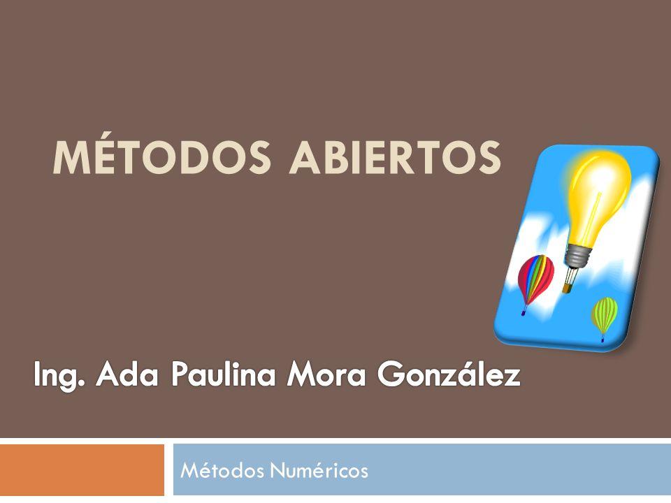 Ing. Ada Paulina Mora González