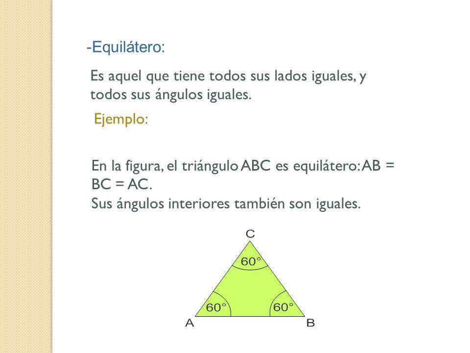 -Equilátero: Es aquel que tiene todos sus lados iguales, y todos sus ángulos iguales. Ejemplo: