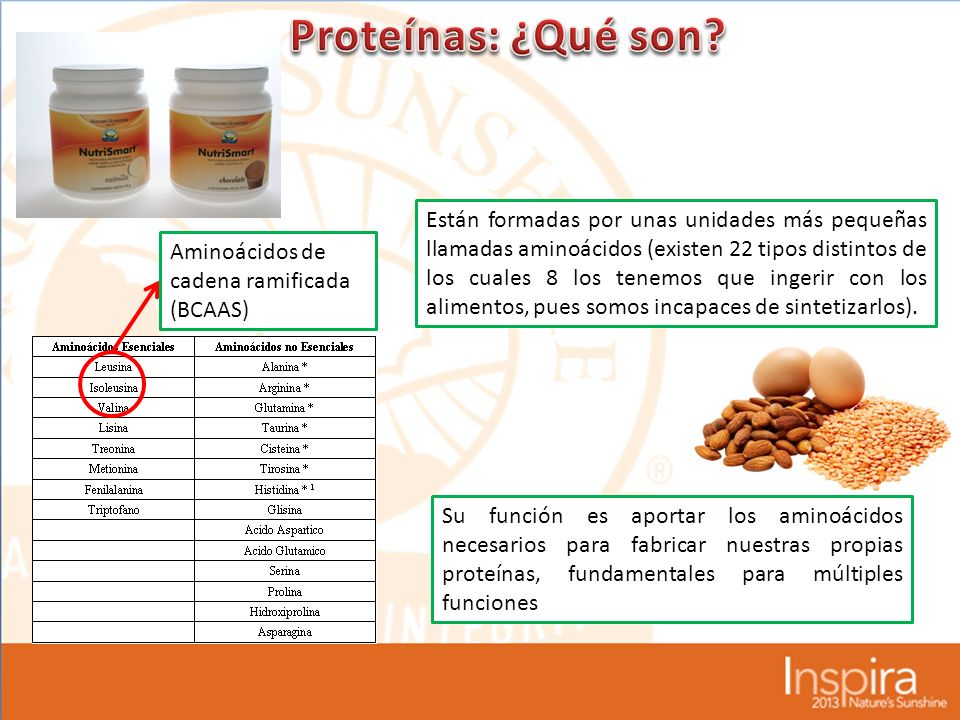 Proteínas: ¿Qué son