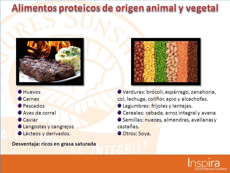 Alimentos proteicos de origen animal y vegetal