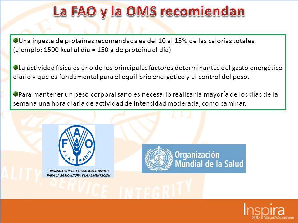 La FAO y la OMS recomiendan