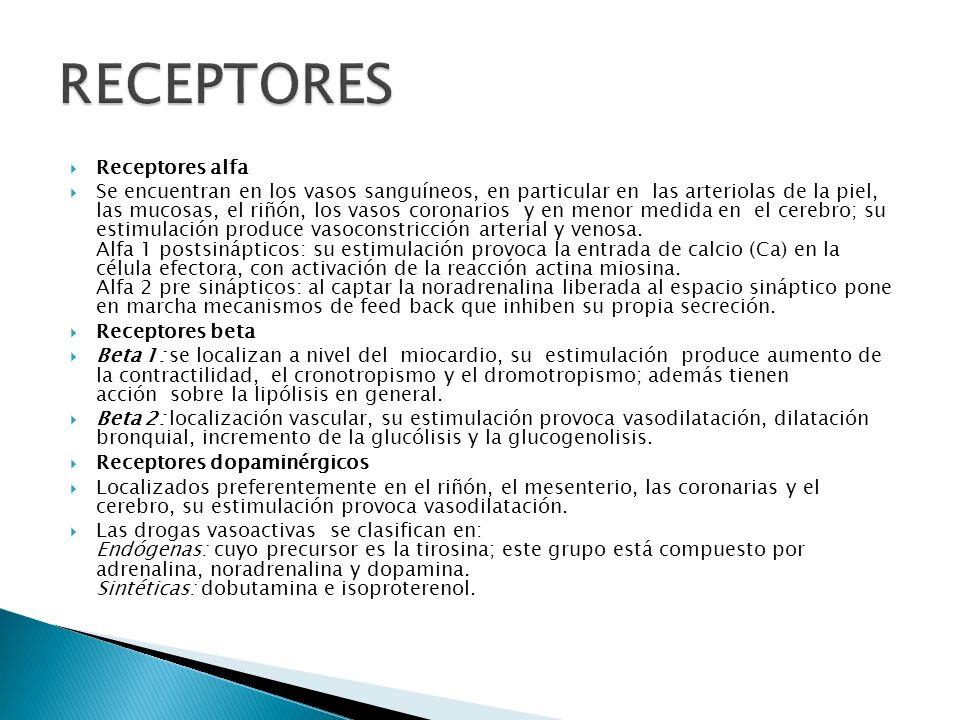 RECEPTORES Receptores alfa